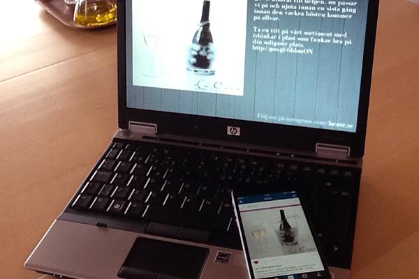 Integrera Ditt Instagramflöde Med Zcreenz DS