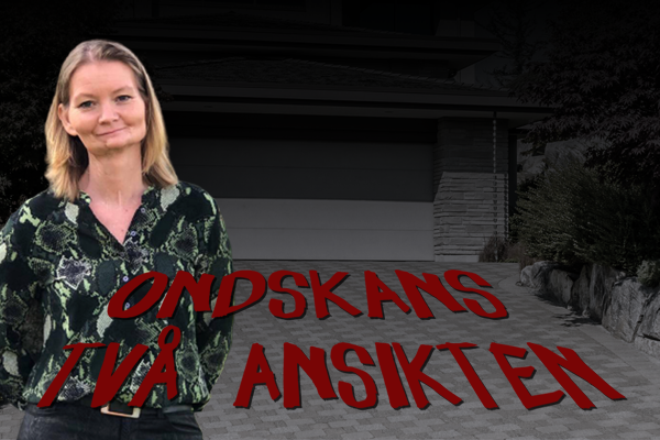 Zcreenz Stöttar Med SoMe & Blogg Under Skrivandet Av Bok